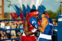 Boxeurs de combat Image libre de droits