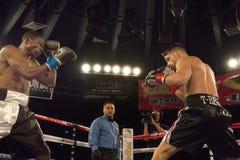 Boxeurs professionnels dans le Matchup Photographie stock