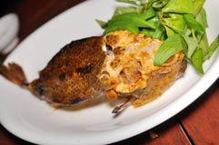 Boxfish image libre de droits
