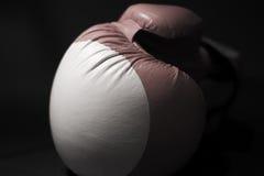 Boxhandschuh Stockfotos