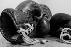 Boxhandschuh lizenzfreie stockbilder