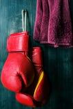 Boxhandschuhe Lizenzfreie Stockbilder