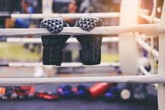 Boxhandschuhe auf Boxring in der Sportturnhalle lizenzfreie stockfotos