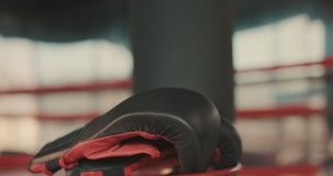Boxhandschuhe, die in Ring legen stock footage
