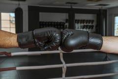 Boxhandschuhe in einer freundlichen Kontaktnahaufnahme auf den Händen von Boxern vor dem Kampf stockfotos