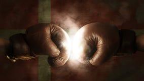 Boxhandschuhe mit der Flagge von Dänemark Lizenzfreie Stockfotos