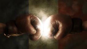 Boxhandschuhe mit der Flagge von Frankreich Lizenzfreie Stockfotografie