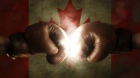 Boxhandschuhe mit der Flagge von Kanada Lizenzfreie Stockbilder