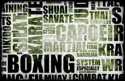 Boxing. Martial Arts as a Fighting Style royalty free illustration
