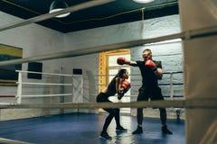 boxing stock foto