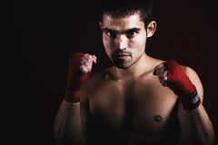 Boxing royalty free stock photography