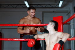 Boxing. Two boxers beat each other on a ring in a gym Royalty Free Stock Photo