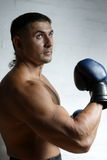 Boxing. The young boxer trains in a gym against a dark background Royalty Free Stock Image