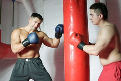 Boxing. Two boxers train in a gym against a dark background Stock Images
