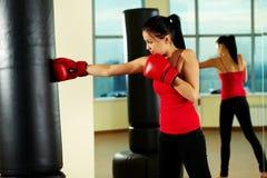 Boxing Stock Photos