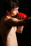 Boxing. Boxer in gloved does his bounce Stock Images
