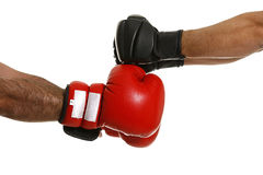 Boxing. Combat over white background Stock Photos