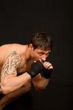 Boxing. Stock Image