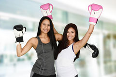boxing stock fotografie