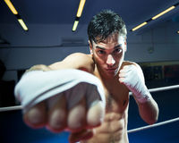 Free Boxing Royalty Free Stock Images - 8372919
