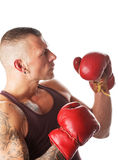 Boxing. Muscular young man in boxing gloves, ready to fight stock images