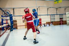 Boxing among adolescents Royalty Free Stock Photography