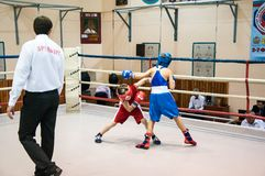 Boxing among adolescents Royalty Free Stock Image
