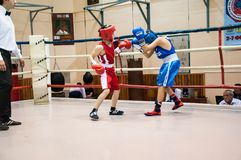 Boxing among adolescents Stock Photo