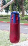 Boxing bags hanging at sports gym. Royalty Free Stock Photo