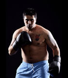 Boxing boxer Stock Photography