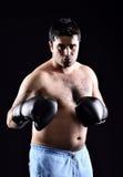 Boxing boxer stock photos