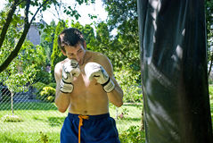 Boxing boy Royalty Free Stock Photography