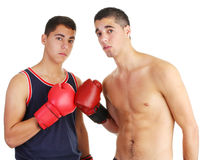 Boxing buddies Stock Photography