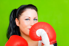 Boxing business success female Stock Photos