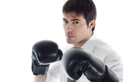 Free Boxing Businessman Royalty Free Stock Photo - 14781495