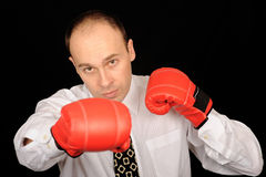 Boxing businessman Stock Image