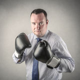 Boxing businessman Royalty Free Stock Photography