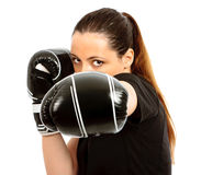 Free Boxing Clever Stock Image - 21202141