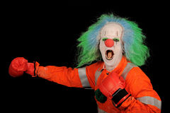 Boxing clown. Clown with wig and makeup wearing boxing gloves Stock Photos