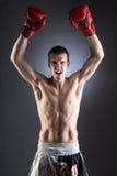 boxing Combattente muscolare Vittoria Immagini Stock Libere da Diritti