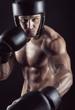 Boxing concept Stock Image