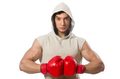 Boxing concept with young sportsman Royalty Free Stock Image