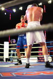 Boxing: D.Arustamyan vs A.Vastin Royalty Free Stock Images