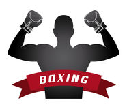 Boxing design. Boxing graphic design , vector illustration Royalty Free Stock Images