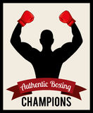 Boxing emblem. Design, vector illustration eps10 graphic Stock Photo