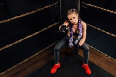 Boxing fashion girl on break sits on a chair resting in a boxing competition ring. Sexy amazing female model. Beautiful braiding kanekalon pigtails hairstyle Royalty Free Stock Image