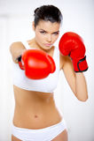 Boxing Girl. Young beautiful woman during fitness time and boxing Royalty Free Stock Photos