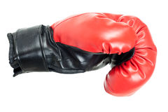 Boxing glove. Single red boxing glove isolated on white background Royalty Free Stock Photo