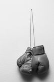 Boxing glove. Hanging over wall Stock Image