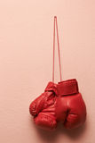 Boxing glove Stock Images